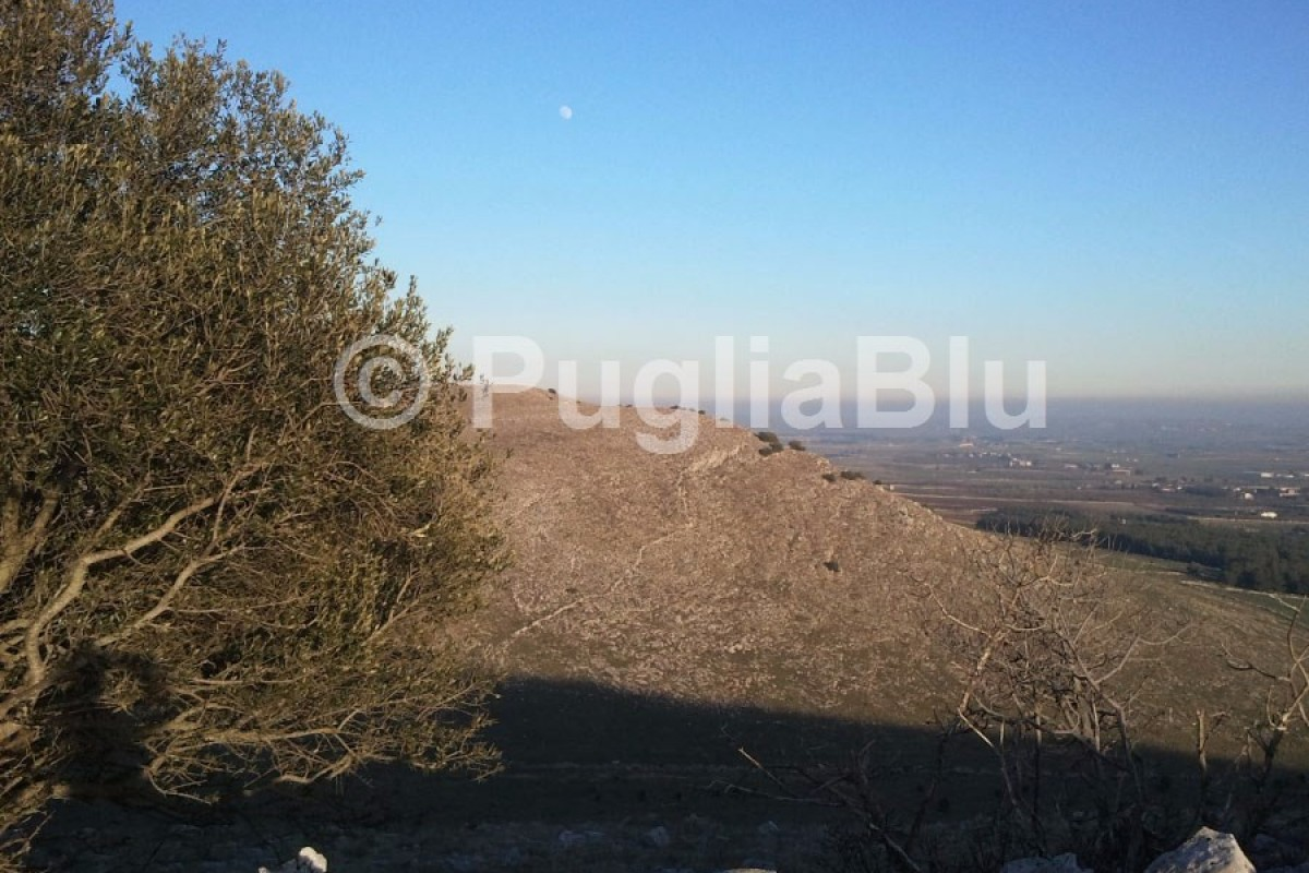 Il Parco Nazionale dell'Alta Murgia in Puglia